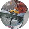 New York Life Coach Toisha Tucker